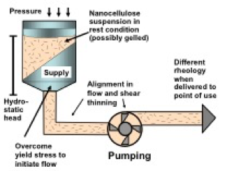 Rheology of nanocellulose-rich aqueous suspensions: A Review